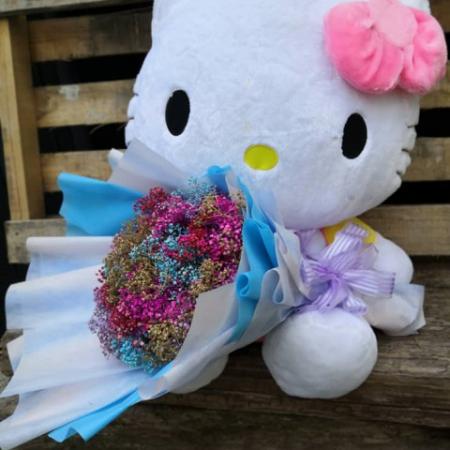 Soft Toys & Flower